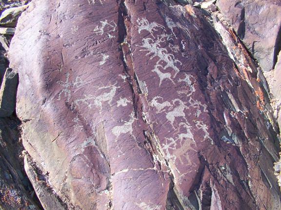 wildlife, ibex, hunting scenes as ancient rock art, Westren Mongolia