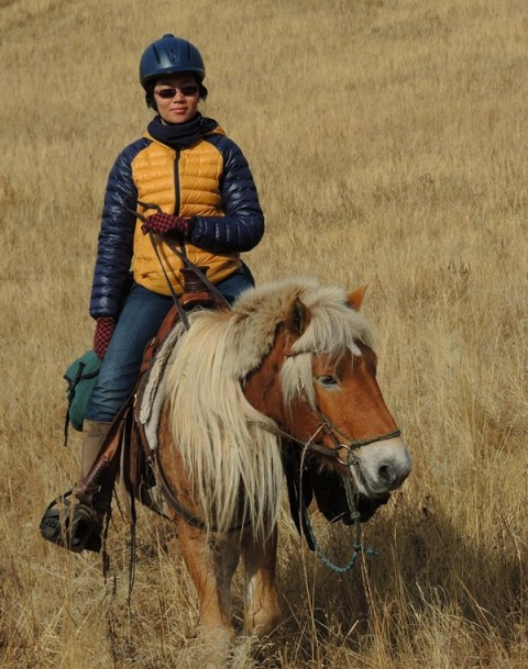 Mongolia Horse Riding, Mongolia Horse Trekking, Horseback Tours, Mongolia, Mongolia horse riding steppe