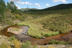The Hagiin Har gol (river) in the Khentii wilderness, to be crossed by trail riding tours in Mongolia
