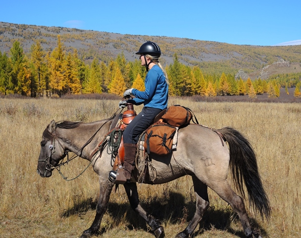 Mongolian Trail Riding Horse - Stone Horse Expeditions & Travel