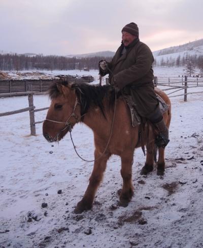 Mongolia horse riding, Mongolia horseback trekking, Mongolia horse, Horseback riding in Mongolia, Mongolia horse, horse ridingin Mongolia, Mongolia tours