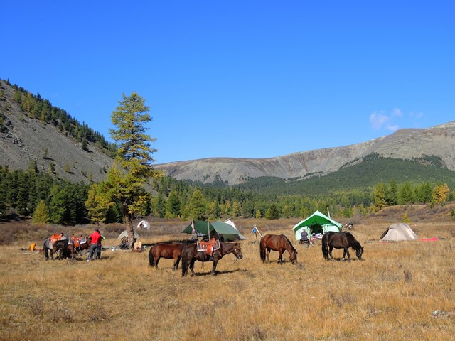 Horse trek camping, hig camp in the Khentii Mountains, during horse riding tour with Stone Horse Expeditons, Khan Khentii, Mongolia