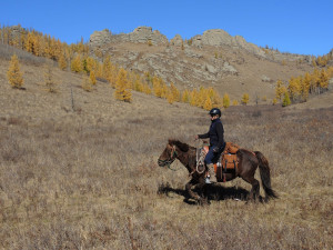 Horse Riding Expeditions in Mongolia, Trails Mongolia, Autumn Horse Riding, Horse Trail Gorkhi Terelj National Park