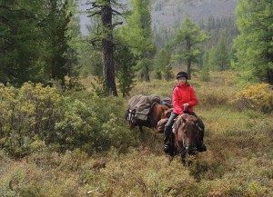 Mongolia Horse Riding Experiences - Forest Riding with Stone Horse Expeditions