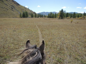 Riding Horse Trails in Mongolia, Stone Horse Expeditions & Travel