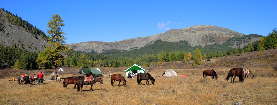 Mongolia horse riding, Mongolia horse trekking, Mongoila horseback travel, Horse Trek Mongolia, Wilderness Camping, Horse Trails Mongolia, Discover Khan Khentii on Horseback,