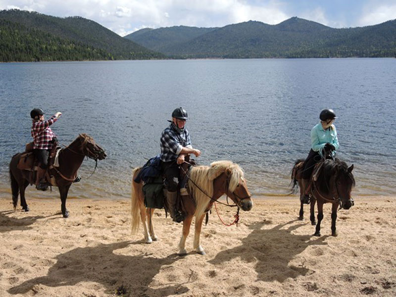 Horse Riding Mongolia, Horseback Tours Mongolia, Riding Vacations Mongolia, Riding Adventures Mongolia