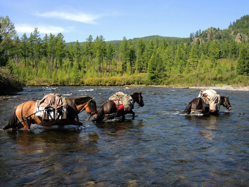 horse trek Mongolia, Khentii wilderness horseback tour, riding adventure tour Mongolia