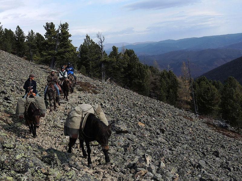 Mongolia horse riding, Horse trails mongolia, equitours Mongolia, Mongolia horse travel, Mongolia horse trekking.