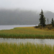 Lake deep in the Khentii Mountains