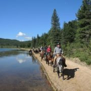 Horse trek on the shore of Hagiin Har Nuur