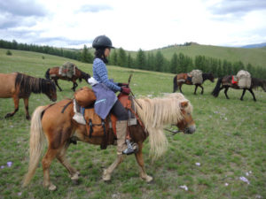 horse trekking, horse riding expeditions Mongolia