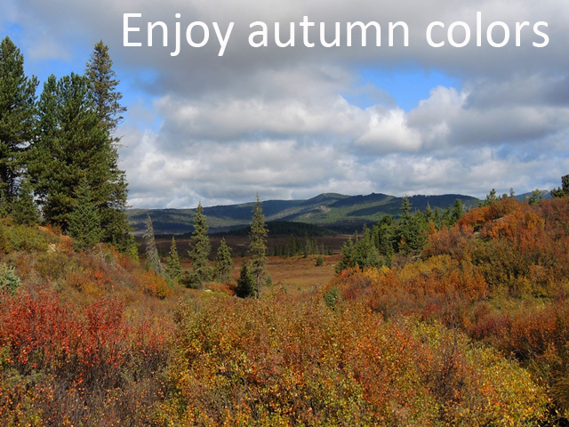 Enjoy autumn colors_1