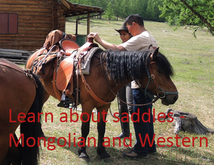 Mongolia horse riding, saddles and equipment_1
