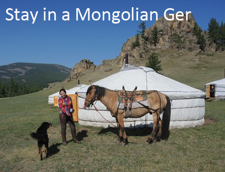 Mongolian ger, herder home stay, ger camp, horse riding tour_1