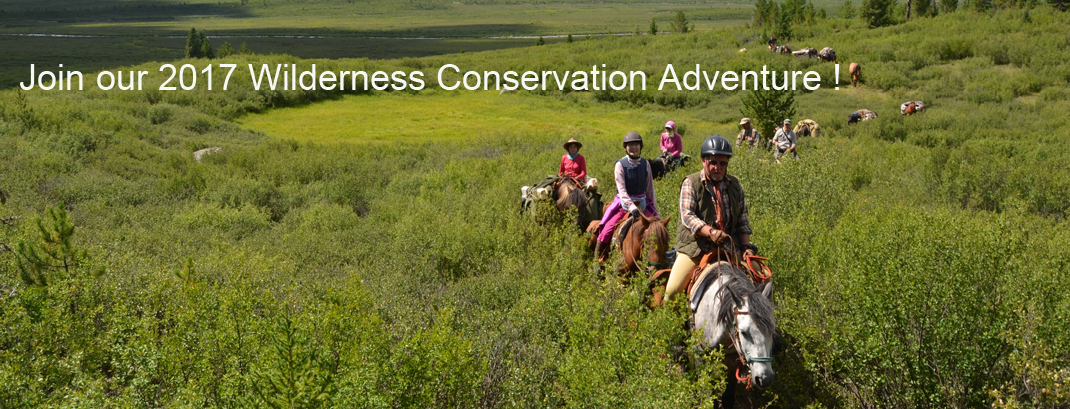 Wilderness Conservation Adventure Mongolia 2017