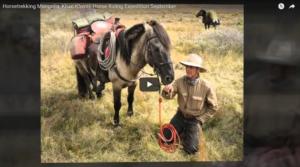 add-new-post-stone-horse-mongolia-wordpress-2017-02-15-11-06-27
