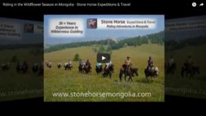 add-new-post-stone-horse-mongolia-wordpress-2017-02-15-11-09-49