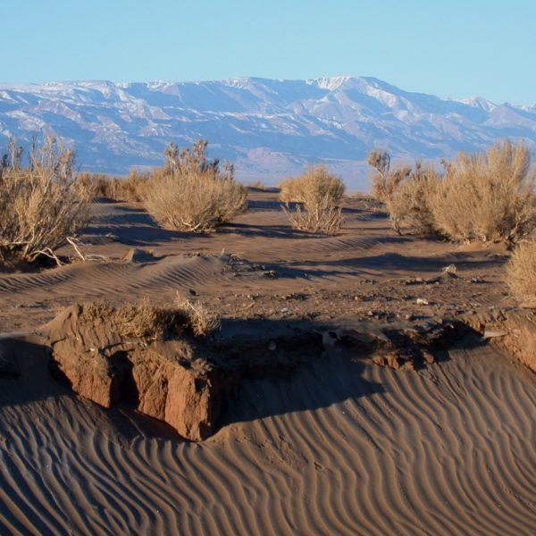desert landscapes, Gobi, Mongolia, Ikh Bogd Mountain