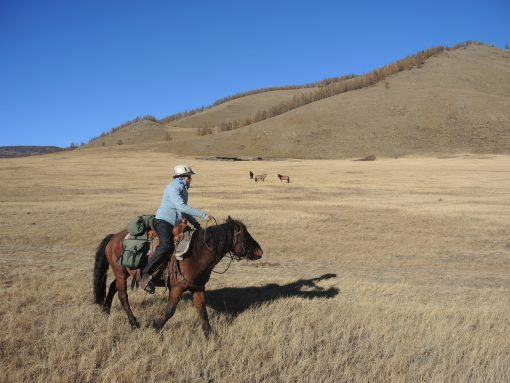 woman adventure travel in Mongolia, horse trekking