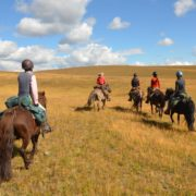 horseback riding in Mongolia, open grasslands and blue sky