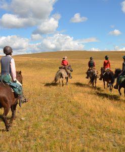 horseback riding in Mongolia, open grasslands and blue sky