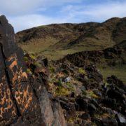 Petroglyphs at Bichigt Khad in the Mongolian Gobi