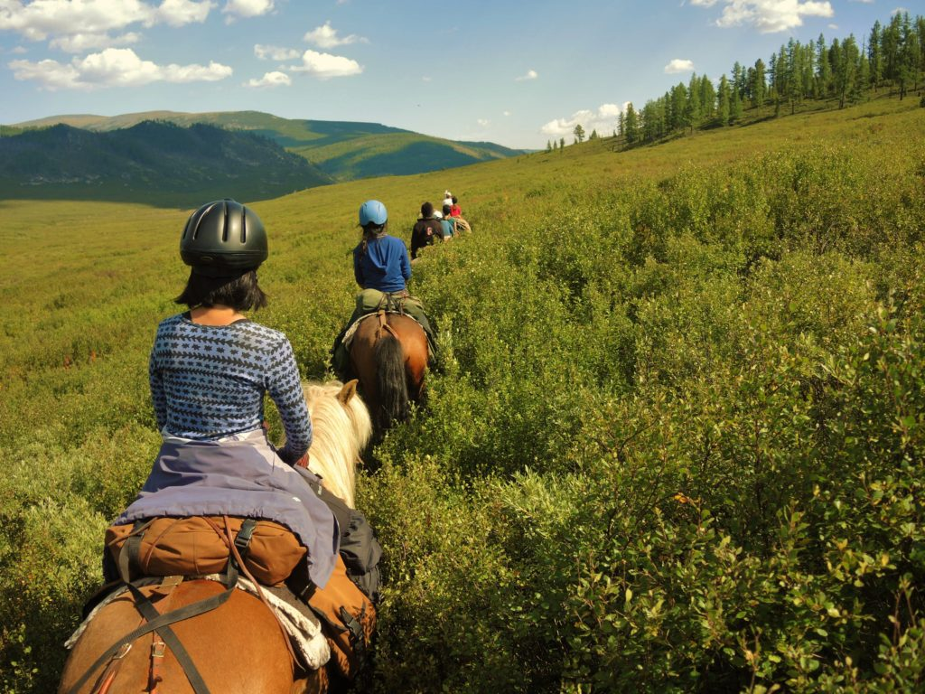 Discover the Heart of Mongolia's Wilderness