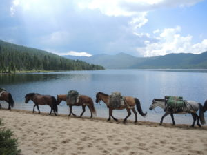 Horseback Adventures for Wilderness Conservation in Mongolia