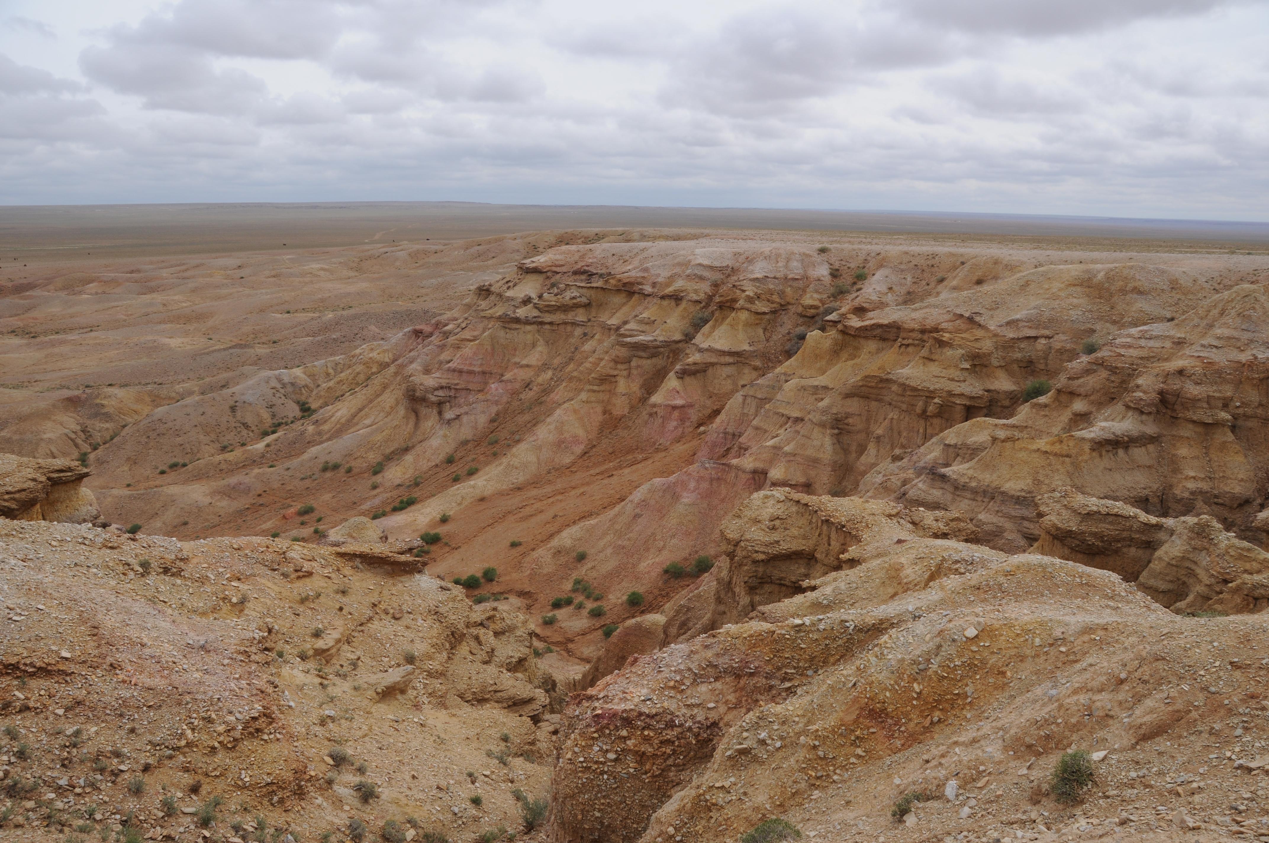 Desert Diversity Tours
