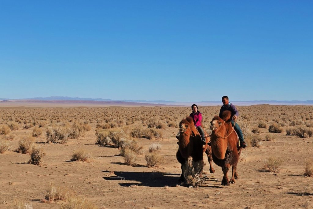 Slow Travel in Mongolia, Camel Trekking in the Gobi with Stone Horse Expeditions