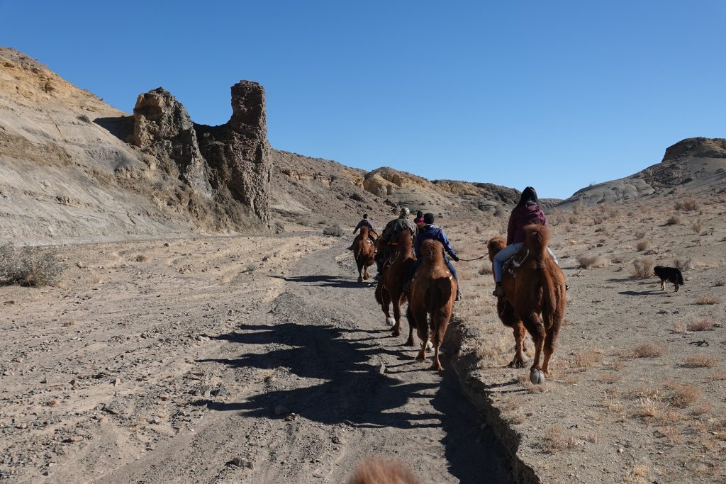 Slow Travel in Mongolia, Camel Riidng in the Gobi, Stone Horse Expeditions