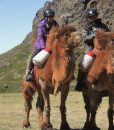 Camel riding guests, Mongolian Gobi, Stone Horse Expeditions