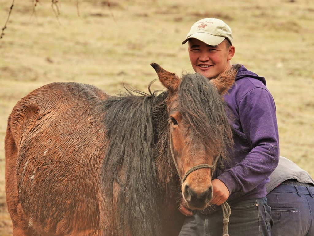 Horse Care in Mongolia, horse man. Veterinarians, Hoof clipping