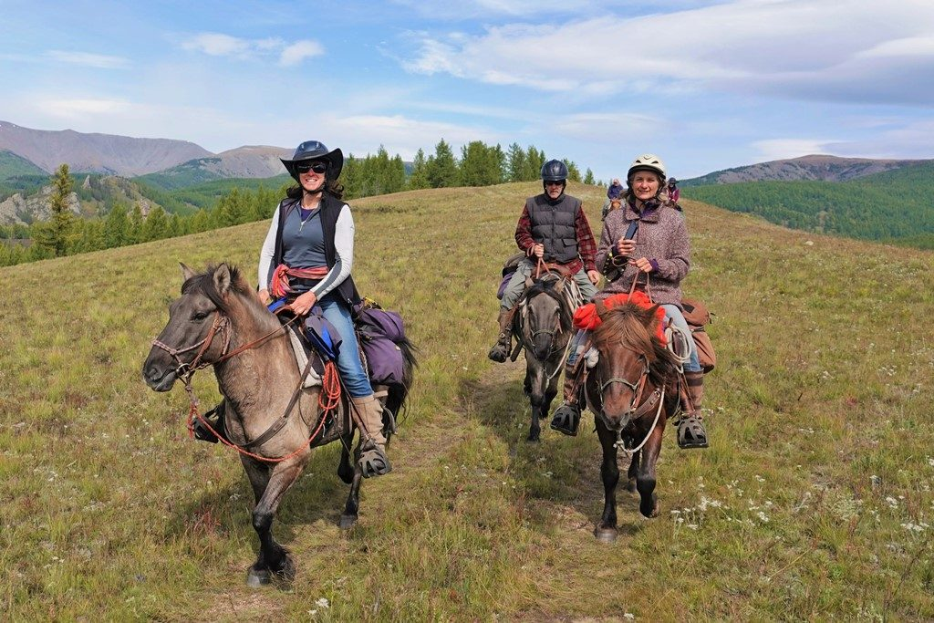 Saddles for Mongolian Trail Horses