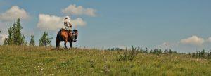 Eco-friendly tour operators in Mongolia, Horse riding Mongolia, horse trekking