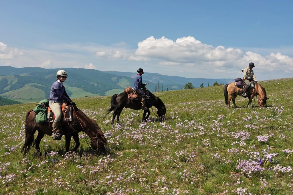Horses, the Dawn of Arts and Forgotten Dreams, Horseback Travel in Mongolia