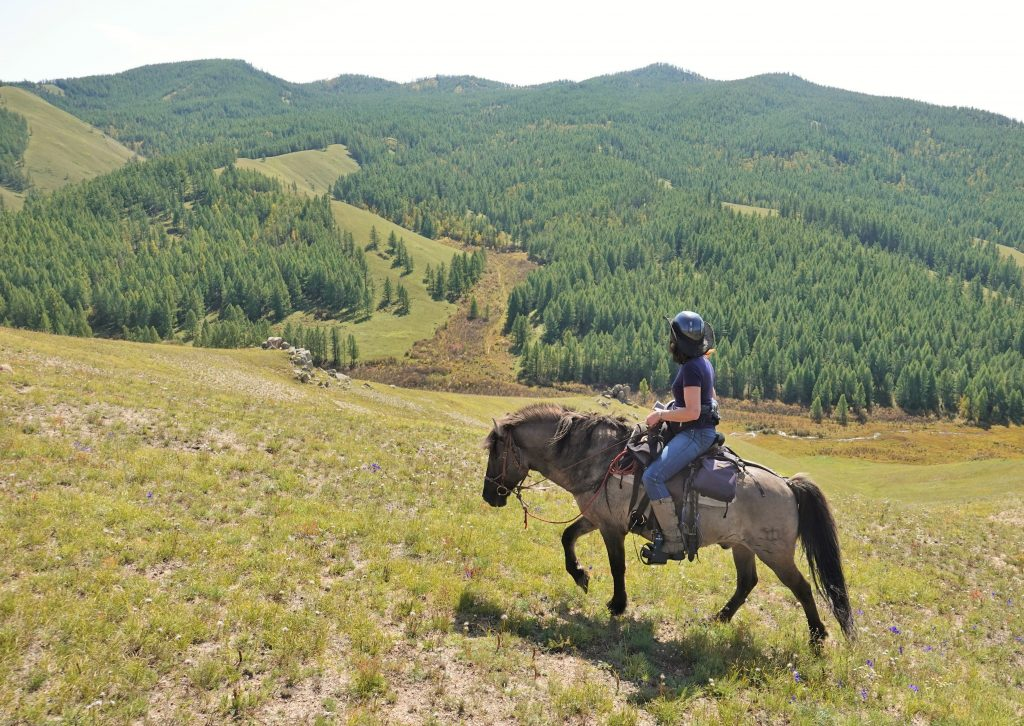 Horses, the Dawn of Arts and Forgotten Dreams, Horseback Journeys in Mongolia, Riding Horses in Mongolia