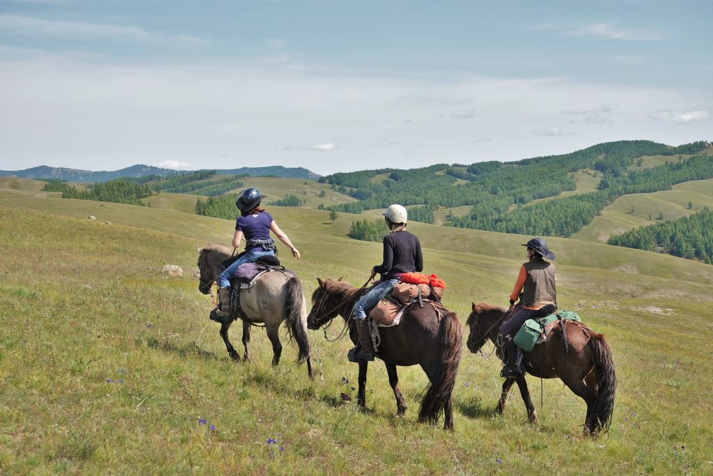 Trail Riding Mongolia, Horse and Rider Communication, Stone Horse Expeditions