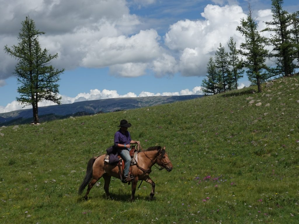 Horse and Rider Communication, Horseriding in Mongolia