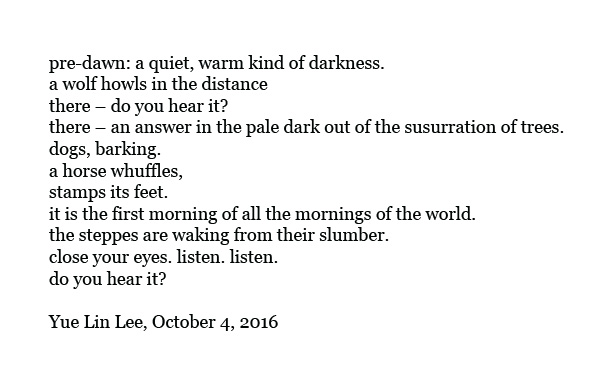 poem by Yue Lin Lee, Mongolia, camping, wilderness,