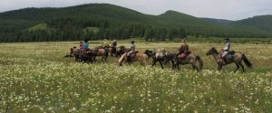 Twenty Two Things to Do while Horse Riding in Mongolia