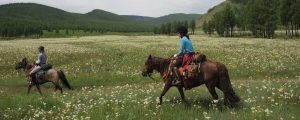 Horse Riding in Mongolia with Covid-19 precautions